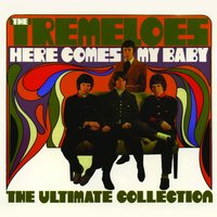 Here Comes My Baby : The Ultimate Collection — The Tremeloes