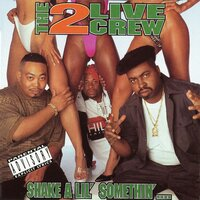 Shake A Lil' Somethin' — The 2 Live Crew