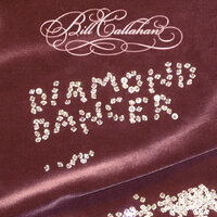 Diamond Dancer — Bill Callahan