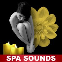 Spa Sounds – Nature Sounds for Wellness, Classic Massage, Pure Relaxation, Massage Therapy, Nature Sounds — Spa Zen