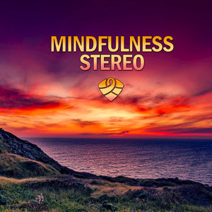 Mindfulness Stereo - Life Is Real