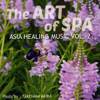 Asia Healing Music, Vol. 2: The Art of Spa — сборник