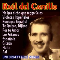 Unforgettable Songs — Raul Del Castillo
