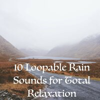 10 Loopable Rain Sounds for Total Relaxation Sleep and Meditation - Schlafen Regen — Entspannungsmusik Meer, Serenity Spa Music Relaxation, Sleep Music System