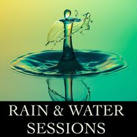 Rain & Water Ambient Sessions - Timeless Sounds of Peace and Harmony for Ultimate Relaxation, Healthy Natural Living, Concentration & Mindfulness, Creativity and Exam & Study Success, and for Help with Sleep and Meditation — Relaxation Sleep Meditation, Natural White Noise Relaxation & Ambient Rain, Ambient Rain, Relaxation Sleep Meditation, Natural White Noise Relaxation