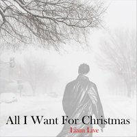 All I Want for Christmas — Liam Live