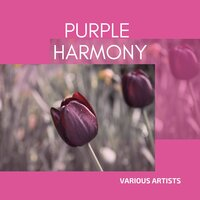 Purple Harmony — сборник
