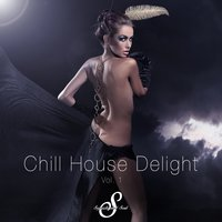 Chill House Delight, Vol. 1 — сборник