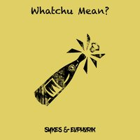 Whatchu Mean? — Sykes, Euphorik