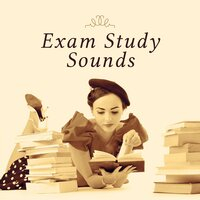 Exam Study Sounds – Homework Music, Inspiring Songs, Deep Focus, Bach, Tchaikovsky — Classical Music Songs