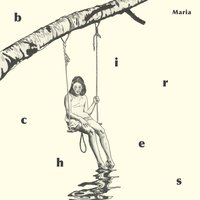 Birches — Maria Andersson