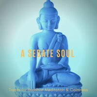 A Sedate Soul - Tracks For Buddhist Meditation & Calmness — Harmonious and Peaceful Mantra
