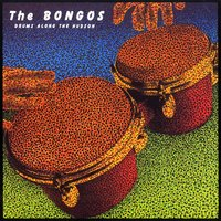 Drums Along the Hudson — The Bongos