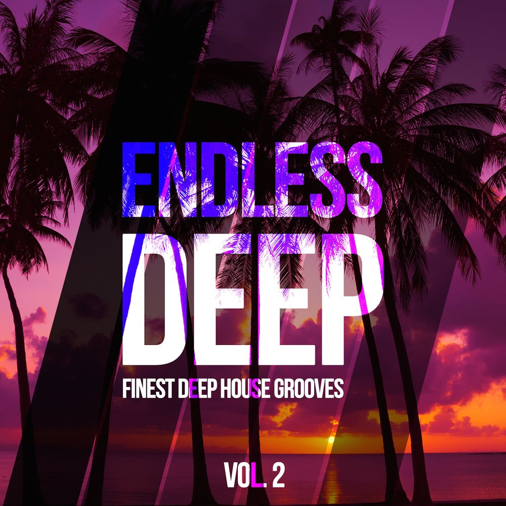 House Grooves, Vol. 2