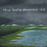 December Ice — The Bats