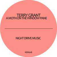 A Moth On the Window Pane — Terry Grant