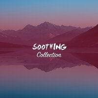 #16 Soothing Collection for Relaxing Meditation — Relaxing Music for Meditation, Dr. Meditation, PowerThoughts Meditation Club, Dr. Meditation, Powerthoughts Meditation Club, Relaxing Music for Meditation