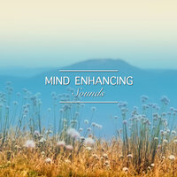 #19 Mind Enhancing Sounds for Yoga and Meditation — Healing Meditation Zone, Relax Meditation Sleep, Namaste Yoga, Namaste Yoga, Healing Meditation Zone, Relax Meditation Sleep