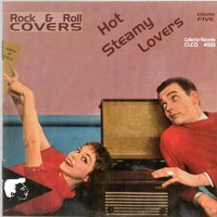 Rock & Roll Covers - Hot Steamy Lovers, Vol. 5 — сборник