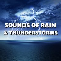 Sounds of Rain & Thunderstorms — Thunderstorm