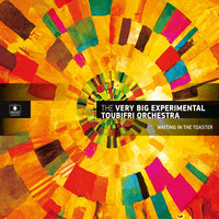 Waiting in the Toaster — The Very Big Experimental Toubifri Orchestra
