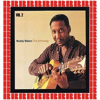 The Anthology, Vol. 2 — Muddy Waters