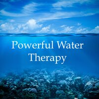 Powerful Water Therapy - 20 Essential Water, Rain and Ocean Melodies for Total Relaxation, Deep Focus, Self Improvement, Transcendental Meditation, Stress Relief, and Deeper & Better Sleep and Mental Health — Rain, Rain Sounds & Nature Collection