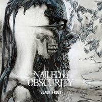 Black Frost — Nailed To Obscurity