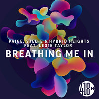 Breathing Me In — Paige, Hybrid Heights, Sted-E, Paige, Sted-E, Hybrid Heights feat. Leote Taylor