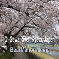 Oi-Gawa River, Kyoto, Japan — Bearmanor Media