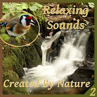 Relaxing Sounds Created by Nature - Part 2 — Nature Sounds Vidobia