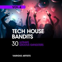 Tech House Bandits, Vol. 4 (30 Ultimate Groove Gangsters) — сборник