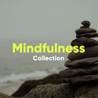 Mindfulness Collection — Soothing Chill Out For Insomnia