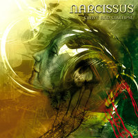 Crave And Collapse — Narcissus