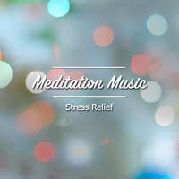 12 Meditation Music: Stress Relief — Meditation Music Club, Meditation and Stress Relief Therapy, Sleep Meditation Dream Catcher, Meditation Music Club, Sleep Meditation Dream Catcher, Meditation and Stress Relief Therapy