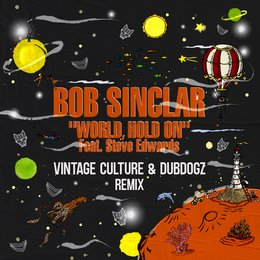 World Hold On — Steve Edwards, Bob Sinclar, Vintage Culture, Dubdogz