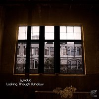 Looking Through Windows — Zymotic