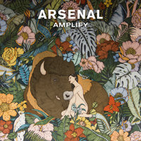 Amplify — Arsenal