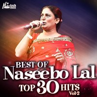 Best Of Naseebo Lal Top 30 Hits, Vol. 2 — Naseebo Lal