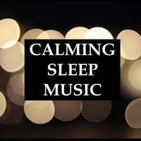 Calming Sleep Music - 20 Relaxing Deep Sleep Melodies for a Peaceful Night, and for Meditation & Yoga, Anxiety Relief, and Deep Focus — Rainforest, Meditation Rain Sounds, Lightning, Thunder and Rain Storm, Meditation Rain Sounds, Rainforest, Lightning, Thunder and Rain Storm