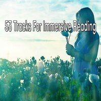 53 Tracks for Immersive Reading — Meditation