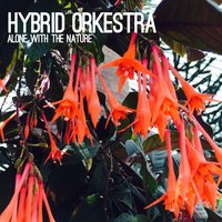 Alone with the Nature — Hybrid Orkestra