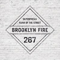Flava of the Street — Skitzofrenix