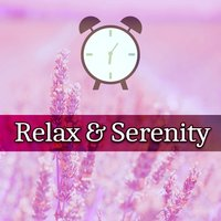Relax & Serenity – Music for Relaxation, Deep Rest, Relaxed Mind, Classical Tracks — Classical Chillout