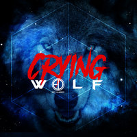Crying Wolf — Ed Unger