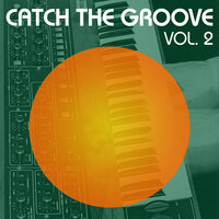 Catch the Groove, Vol. 2 — сборник