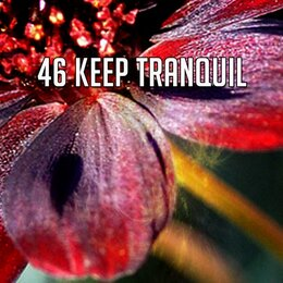 46 Keep Tranquil — Sleep Sounds Of Nature