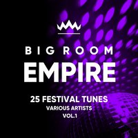 Big Room Empire (Festival Tunes), Vol. 1 — сборник