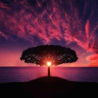 Japanese Relaxation and Meditation — слушать онлайн на