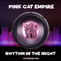 Rhythm In The Night — Pink Cat Empire